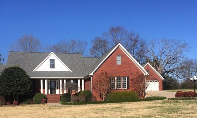 142 James Road, New Johnsonville, TN 37134 - #: 2004865