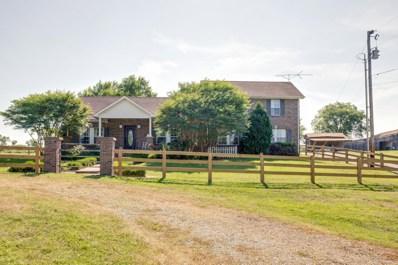 1131 Carters Creek Pike (17.81), Columbia, TN 38401 - #: 2050908