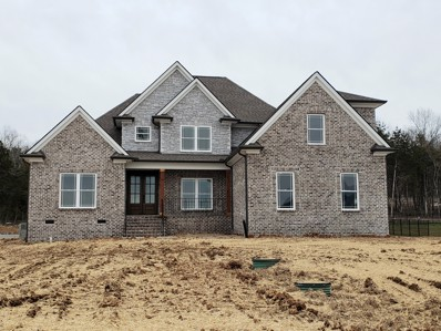 141 Seclusion Ct.- Lot 17, Murfreesboro, TN 37129 - #: 2170414