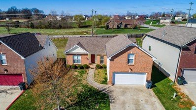 3463 Oak Creek Dr, Clarksville, TN 37040 - #: 2220625