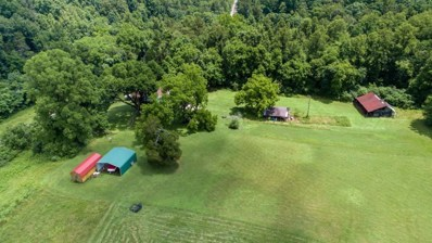 1018 Hassler Mill Road, Harriman, TN 37748 - #: 20184025