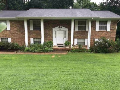 1723 Ray Jo Circle, Chattanooga, TN 37421 - #: 20184613
