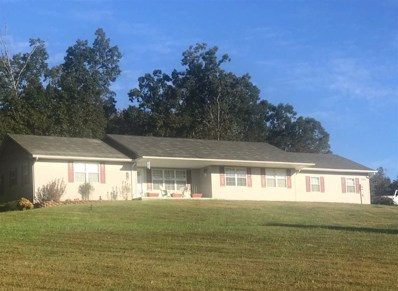 353 County Road 961, Riceville, TN 37370 - #: 20186447