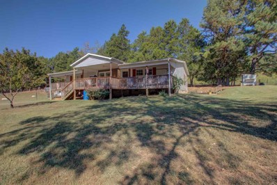 901 Colbaugh Hollow Road, Decatur, TN 37322 - #: 20195895