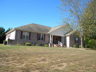 114 County Road 1154, Riceville, TN 37370 - #: 20196070