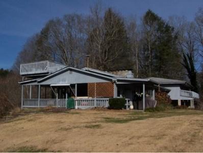 207 Hillcrest Drive, Mountain City, TN 37683 - #: 341689