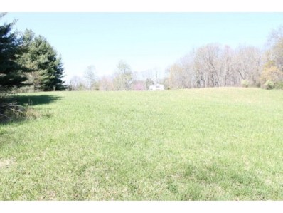 Waterhouse Lane, Emory, VA 24327 - #: 375762