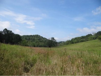 Lindell Road, Meadowview, VA 24361 - #: 382031