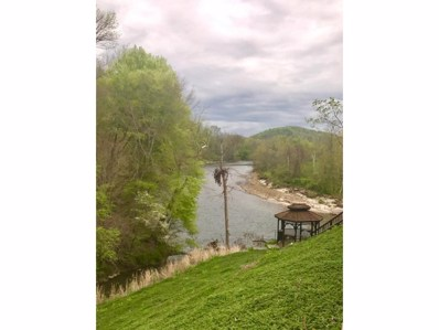 511 Blackberry, Afton, TN 37616 - #: 390424