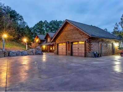 252 Blackberry Lane, Afton, TN 37616 - #: 390880