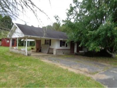 402 Fairhaven Street, Mountain City, TN 37683 - #: 397070