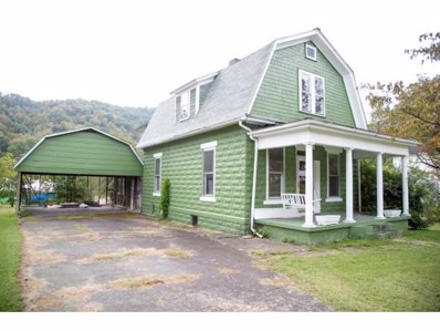 310 Maple Ave E, Big Stone Gap, VA 24219 - #: 397531