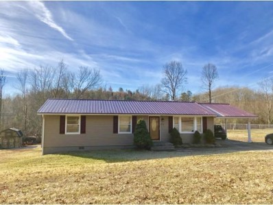 535 Fraley Ave, Duffield, VA 24244 - #: 399814