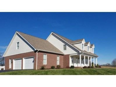 167 Country Club Drive, Abingdon, VA 24211 - #: 399851