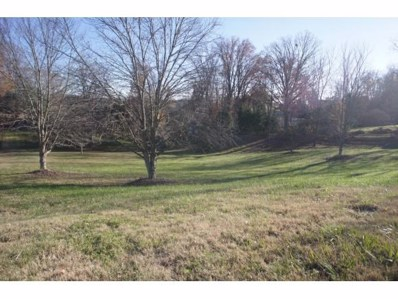 109 Beechwood Court, Kingsport, TN 37663 - #: 400025