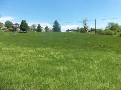 Chestnut Ridge Road, Chilhowie, VA 24319 - #: 401060