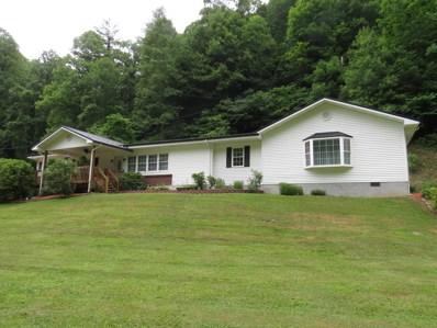 1008 Lick Creek Road, Birchleaf, VA 24220 - #: 404418