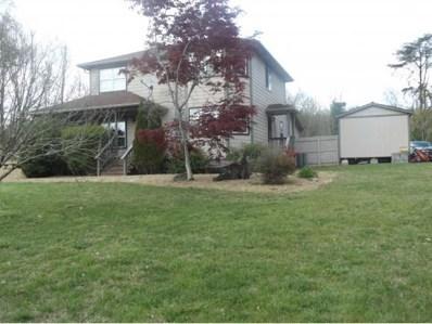124 Howard Elkins Rd, Rogersville, TN 37857 - #: 405170