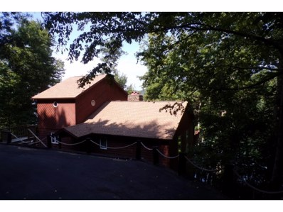 310 Cove Ridge Road, Mountain City, TN 37640 - #: 405767