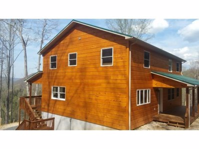 255 Trout Run Cove, Roan Mountain, TN 37687 - #: 406532