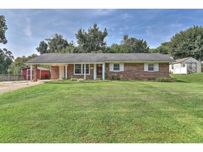 353 College Hills Drive, Greeneville, TN 37745 - #: 406894