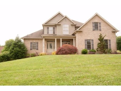 101 Fawnwood Court, Jonesborough, TN 37659 - #: 408684