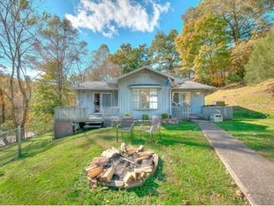 313 Rich Hollow Rd, Erwin, TN 37650 - #: 408935