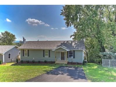 1701 Sevier Terrace Drive, Kingsport, TN 37660 - #: 410998