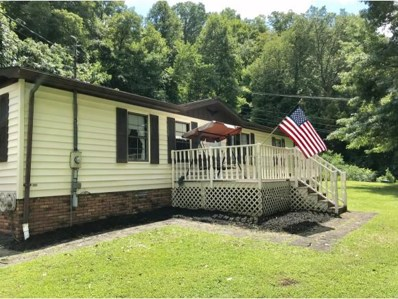 103 Morgan Dr., Big Stone Gap, VA 24219 - #: 411027
