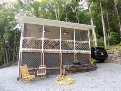 415 Log Cabin Road, Greeneville, TN 37743 - #: 411459