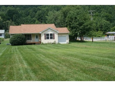 614 Old Highway 143, Roan Mountain, TN 37687 - #: 411482
