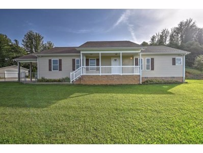 16100 Pocahontas Trail, Meadowview, VA 24361 - #: 411497