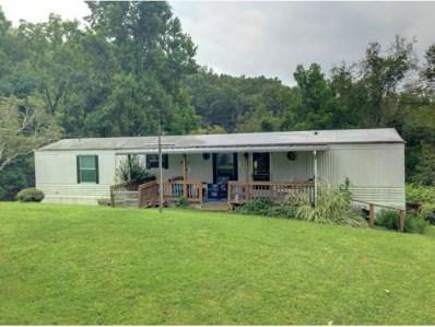 1389 Newberry Ridge, Clintwood, VA 24228 - #: 411529