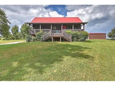 219 Muddy Fork Rd, Jonesborough, TN 37659 - #: 412023