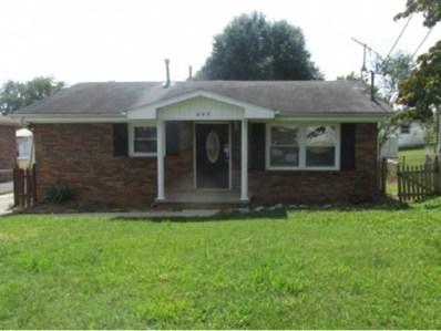 317 Roosevelt St, Johnson City, TN 37601 - #: 412358