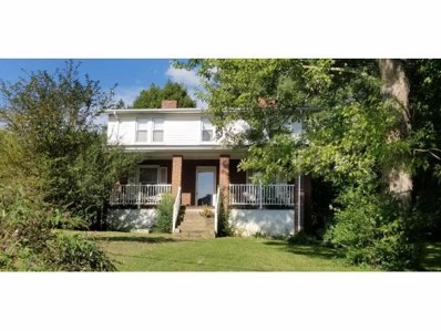 1305 Texas Ave, Bristol, VA 24201 - #: 412414