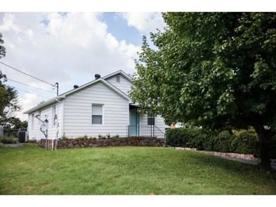 128 Mountain View Dr., Johnson City, TN 37601 - #: 412793