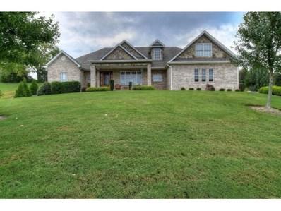 211 Lake Ridge Drive, Jonesborough, TN 37659 - #: 413103