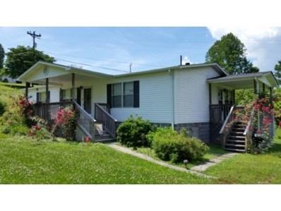 1360 Ridgeview Road, Jonesville, VA 24263 - #: 413823