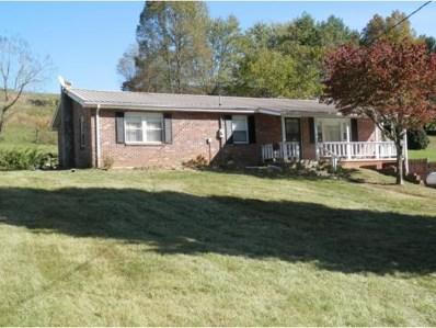276 Shady Drive, Jonesville, VA 24263 - #: 414136