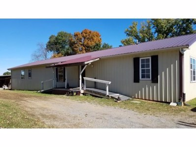 3328 McKinley Road, Johnson City, TN 37604 - #: 414756