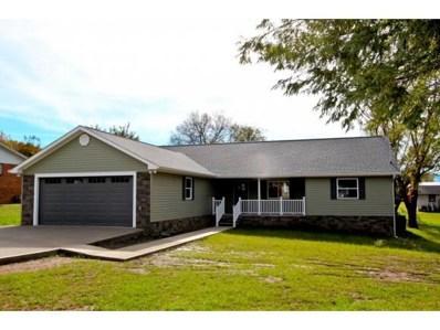 887 Overholt Rd, Newport, TN 37821 - #: 414762