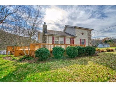 120 Summerview Ct, Kingsport, TN 37663 - #: 415072