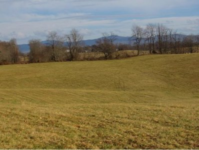 Cedar Creek Road, Meadowview, VA 24361 - #: 417425