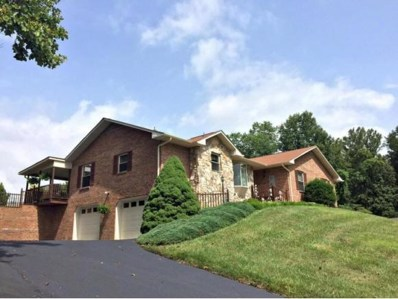 113 Fox Hall Circle, Bristol, TN 37620 - #: 418182