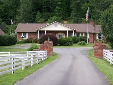 8507 Highway 19-E, Roan Mountain, TN 37687 - #: 419234