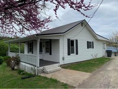 529 Auburn Street, Bristol, TN 37620 - #: 420065