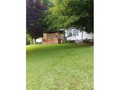 273 Shell Creek Road, Roan Mountain, TN 37687 - #: 425703