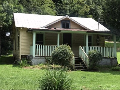 203 Hampton Creek Road, Roan Mountain, TN 37687 - #: 426536