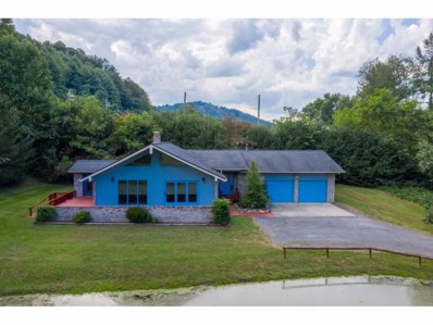 128 Orr Street, Roan Mountain, TN 37687 - #: 427330